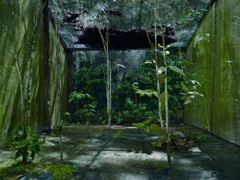 02_sunken_gardens